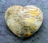 PETRIFIED WOOD HEARTS