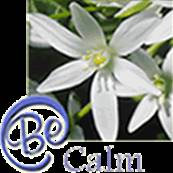 FLOWER ESSENCE by Sun Essences CALM CRISIS BLEND 30ML. SUN09