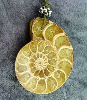 POLISHED FACE AMMONITE FOSSIL PENDANT. SP4196PEND