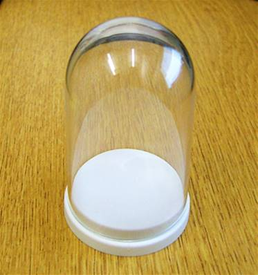 10 X PLASTIC 'THIMBLE' DOMED DISPLAY BOX - WHITE BASE WITH CLEAR TOP (D2 SIZE) D2/43D/68T