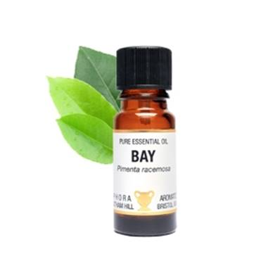 PURE ESSENTIAL OIL - BAY. pimenta racemosa. SPR1640