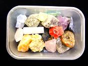 ROCK COLLECTORS STARTER TRAY.   SP10825SHLF