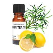 PURE ESSENTIAL OIL - LEMON TEA TREE, leptospermum petersonii. SPR8478