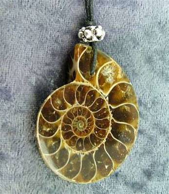 POLISHED FACE AMMONITE FOSSIL PENDANT. SP4198PEND